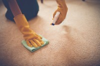Don't make these carpet cleaning mistakes